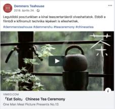 Demmers Facebook poszt video